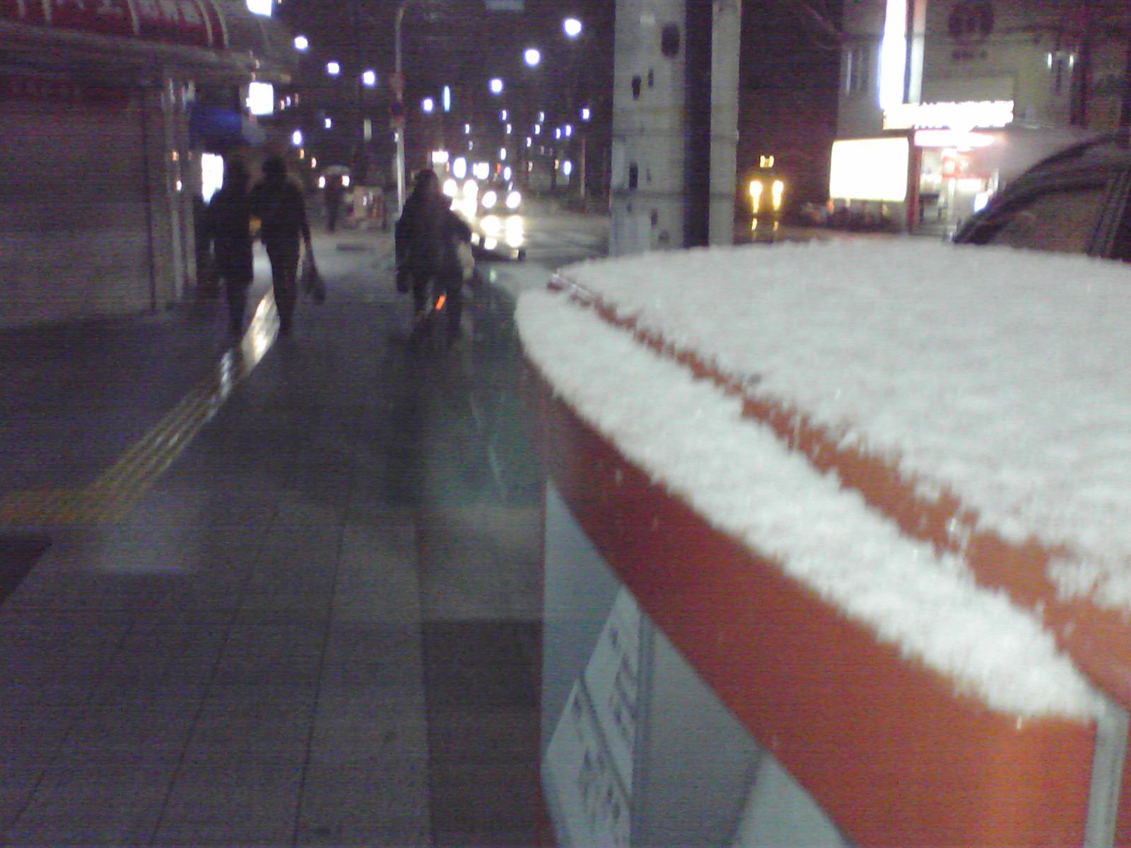今日も寒いです。